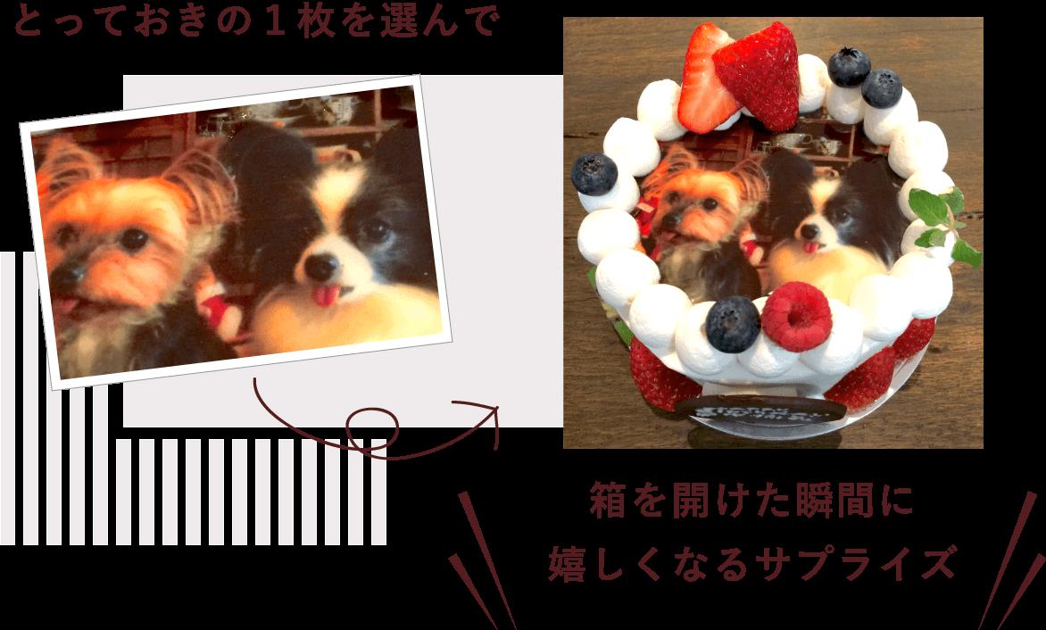 プリントケーキって?